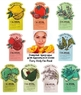 Тканевая маска с экстрактом макколи Tony Moly I'm Real Makgeolli Mask Sheet
