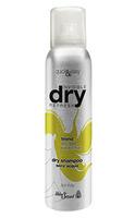 Helen Seward Dry Shampoo Сухой шампунь для светлых волос