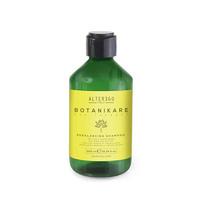 Alter Ego Rebalancing Shampoo Шампунь нормализующий для жирной кожи головы и волос